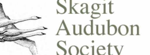 Skagit Audubon Society Opposes Quarry Mine